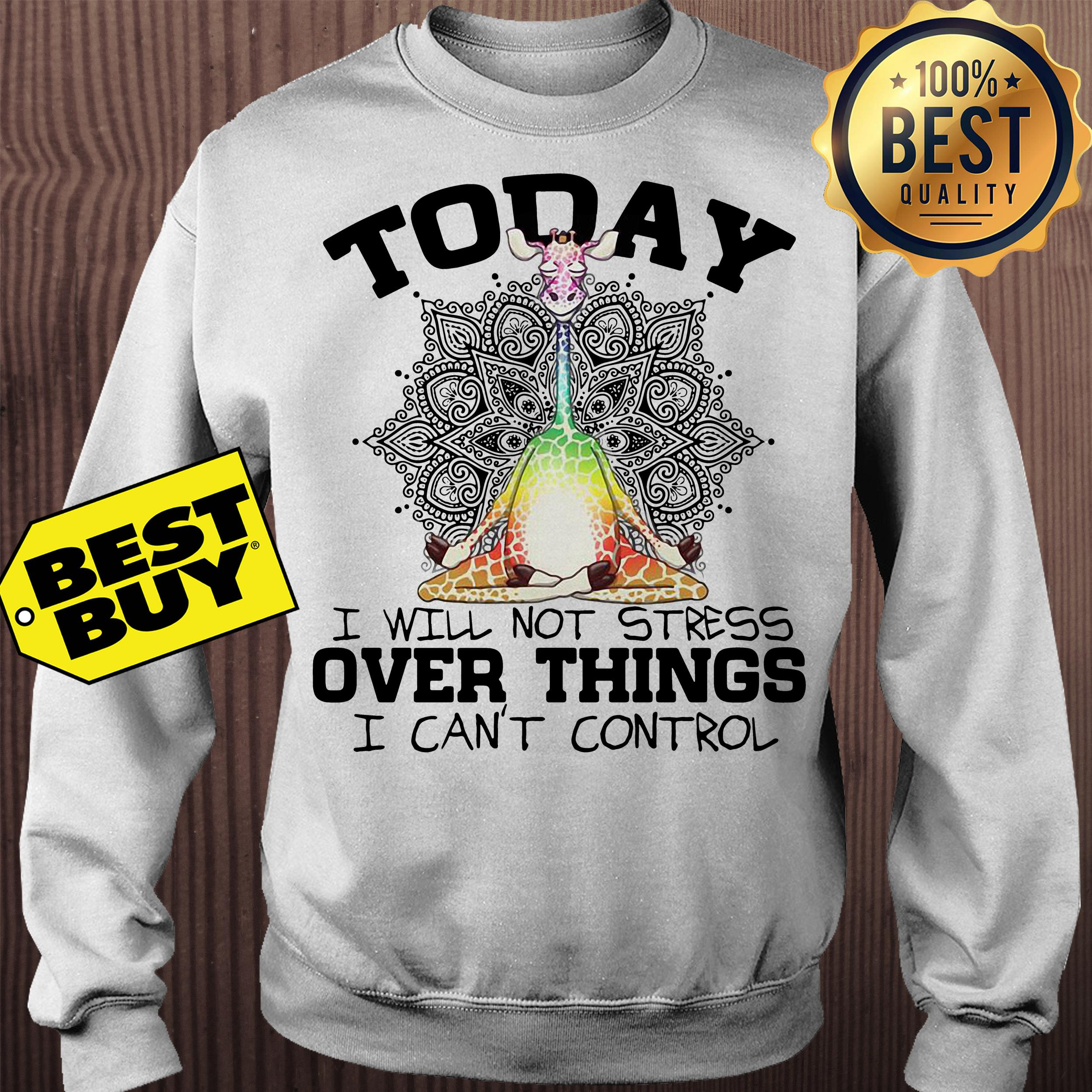 Giraffe Yoga today I will not stress over things I can't control sweatshirt
