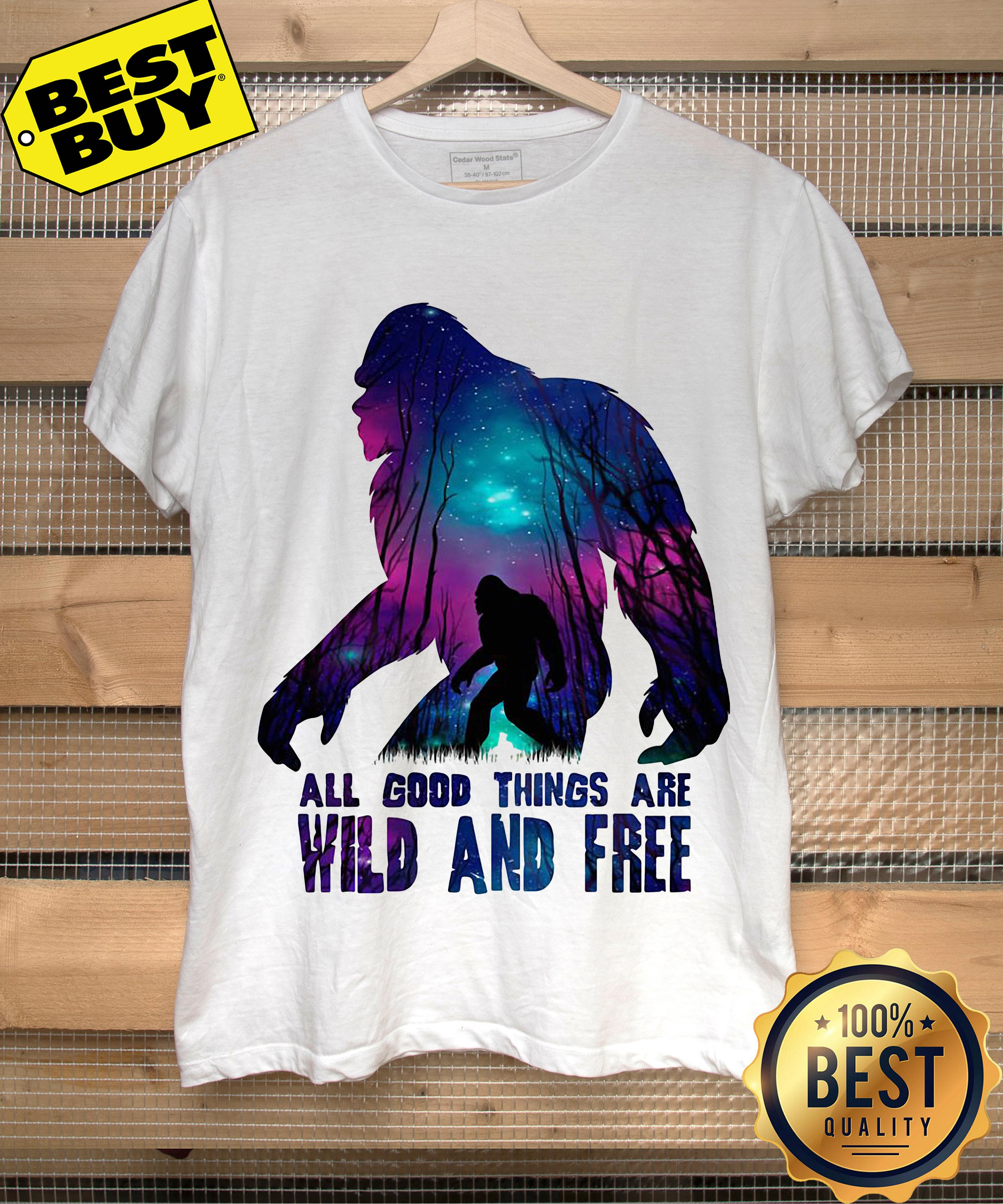All good things wild and free ladies tee