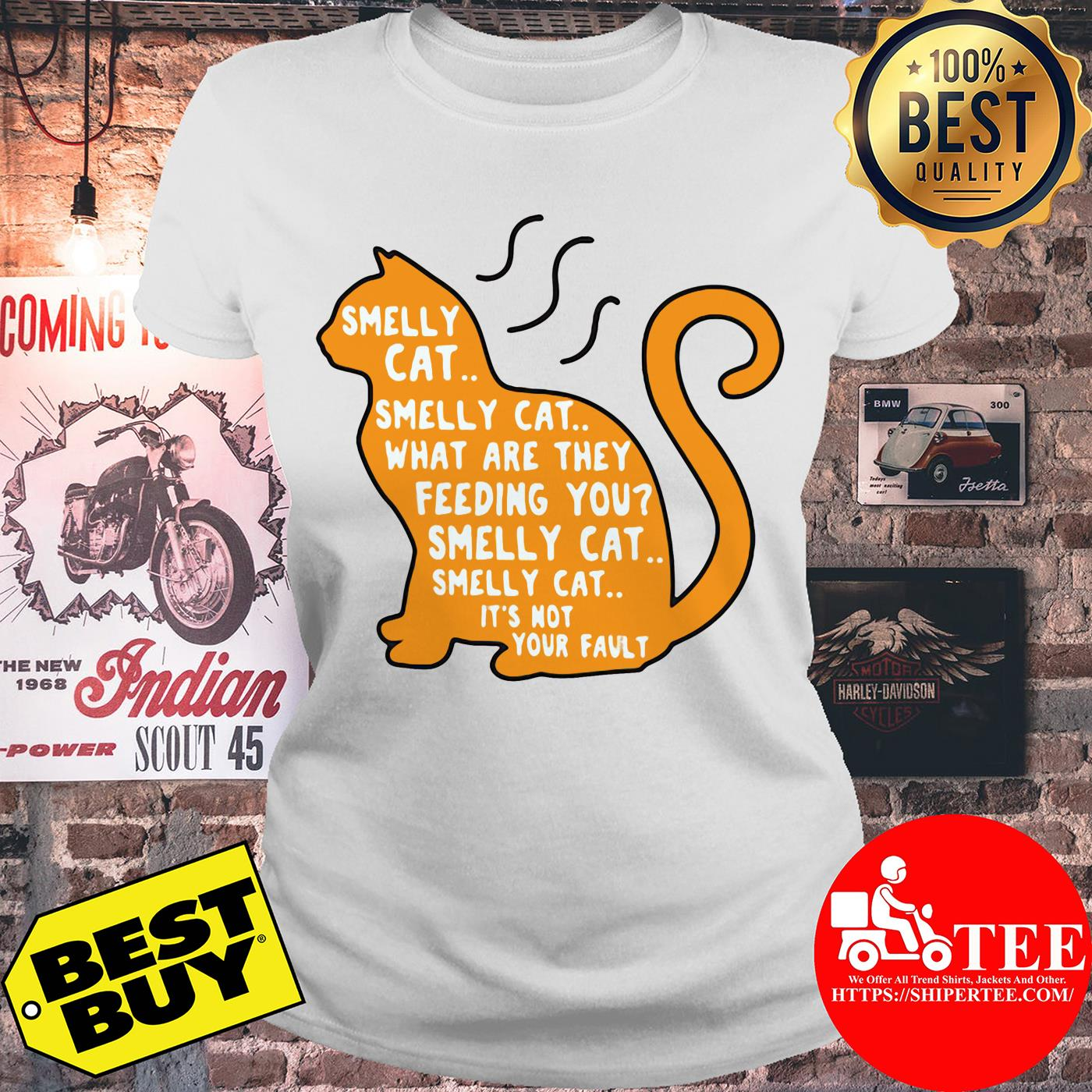 Smelly cat what are they feeding you it's not your fault ladies tee