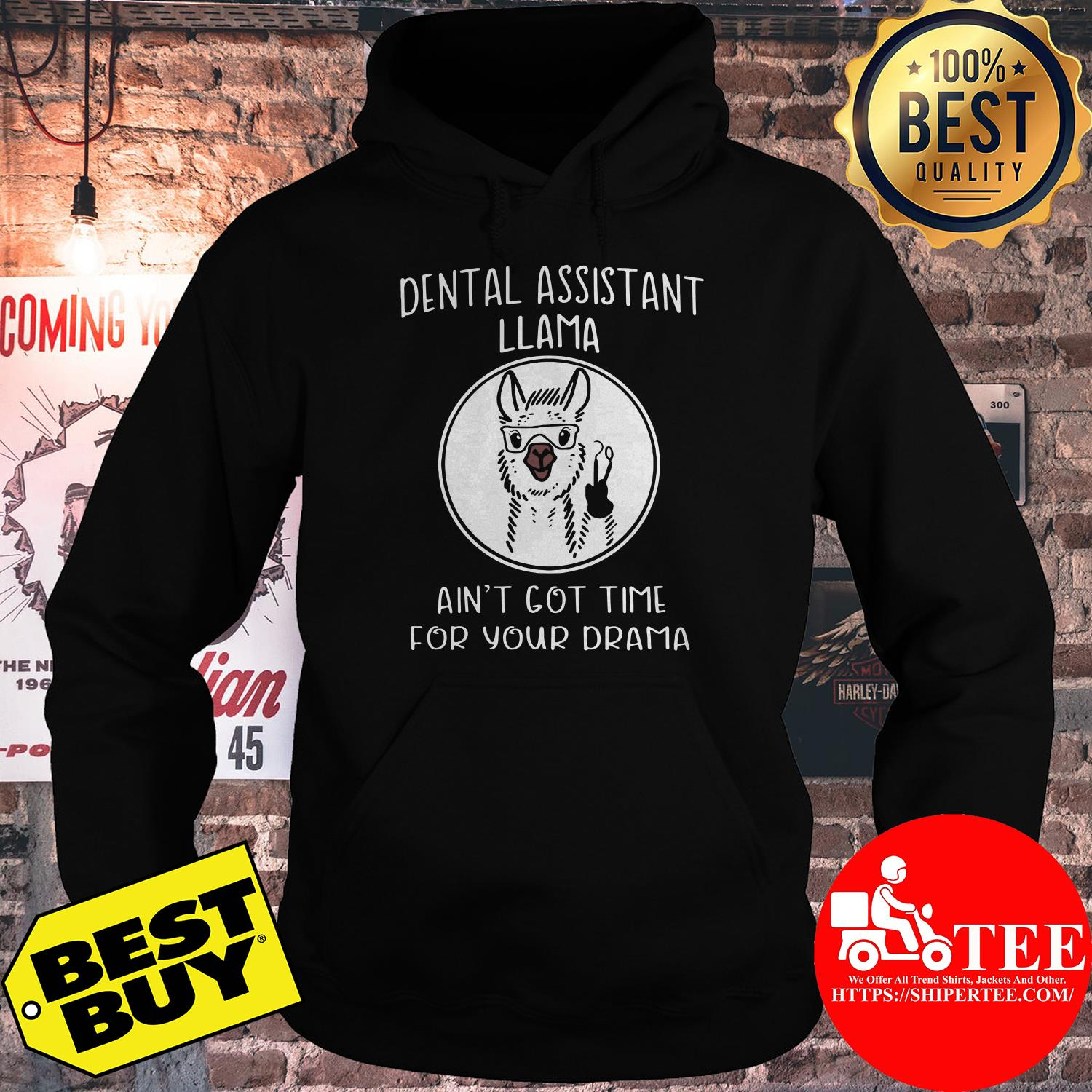 Dental assistant Llama ain't got time for your drama sheep shirt