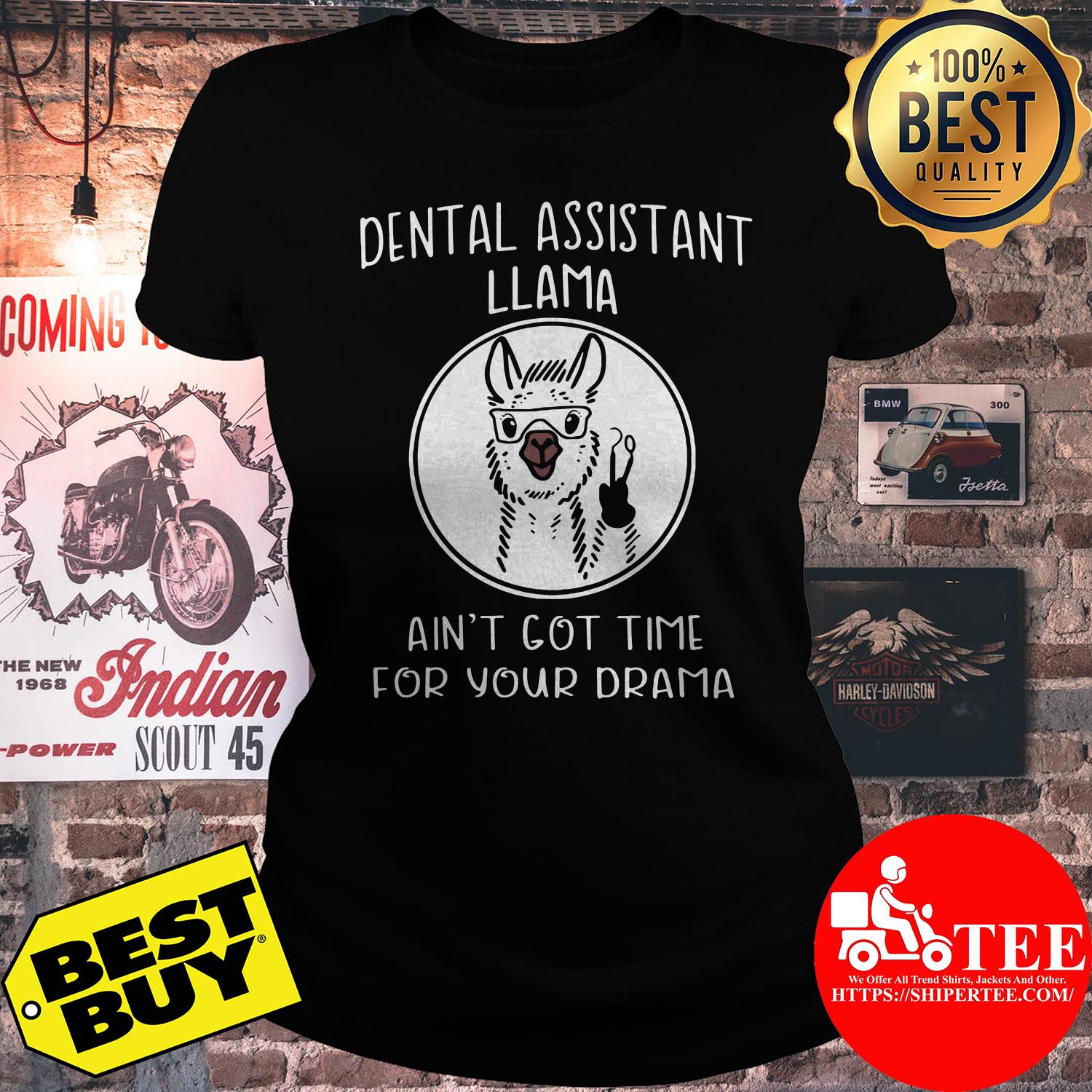 Dental assistant Llama ain't got time for your drama sheep ladies tee