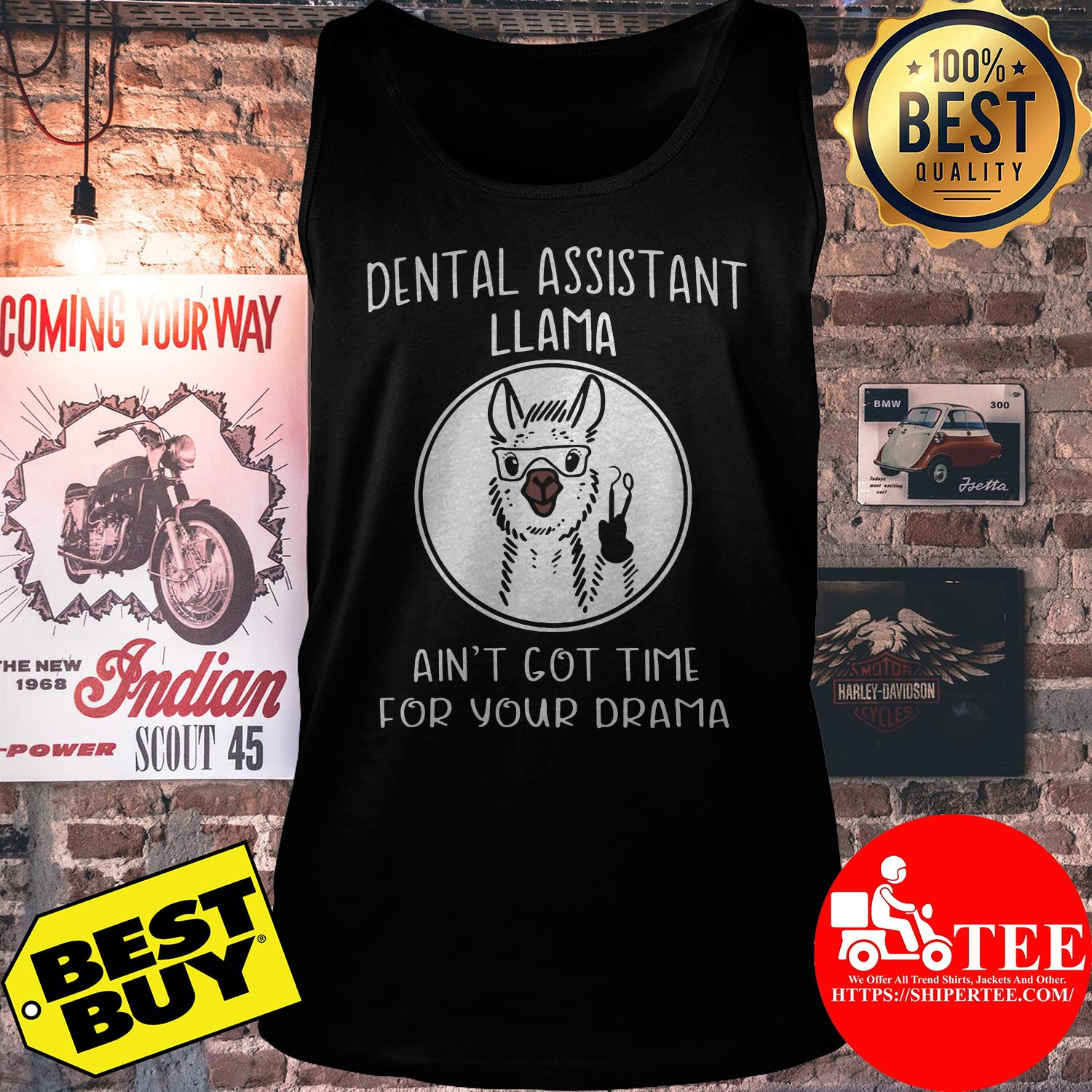 Dental assistant Llama ain't got time for your drama sheep tank top