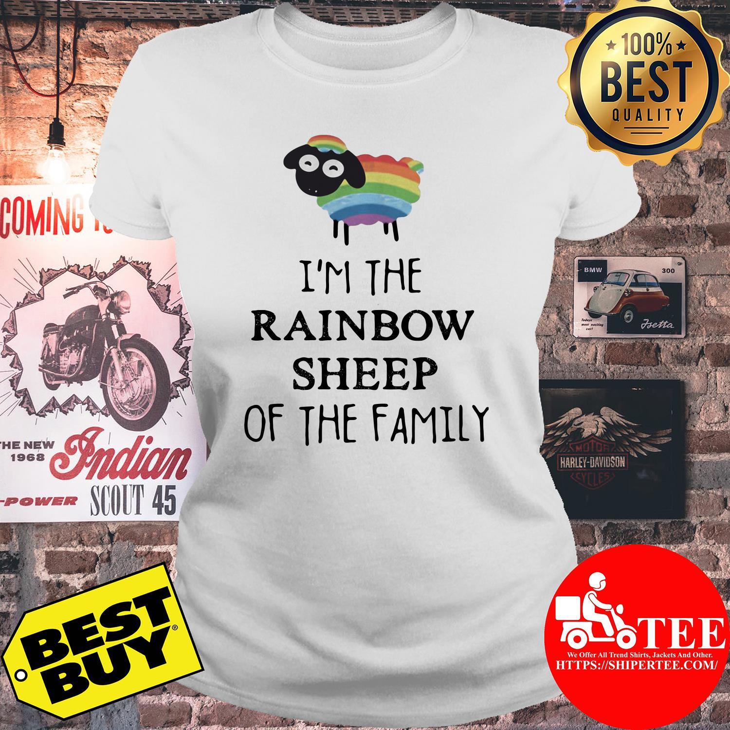 I'm The Rainbow Sheep Of The Family ladies tee