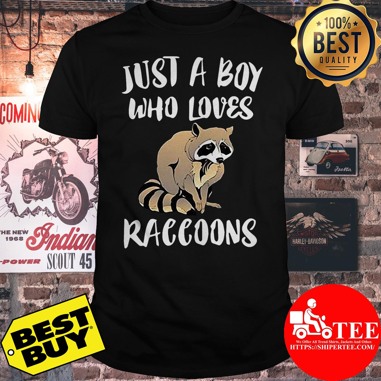 Just a boy who loves Raccoons shirt